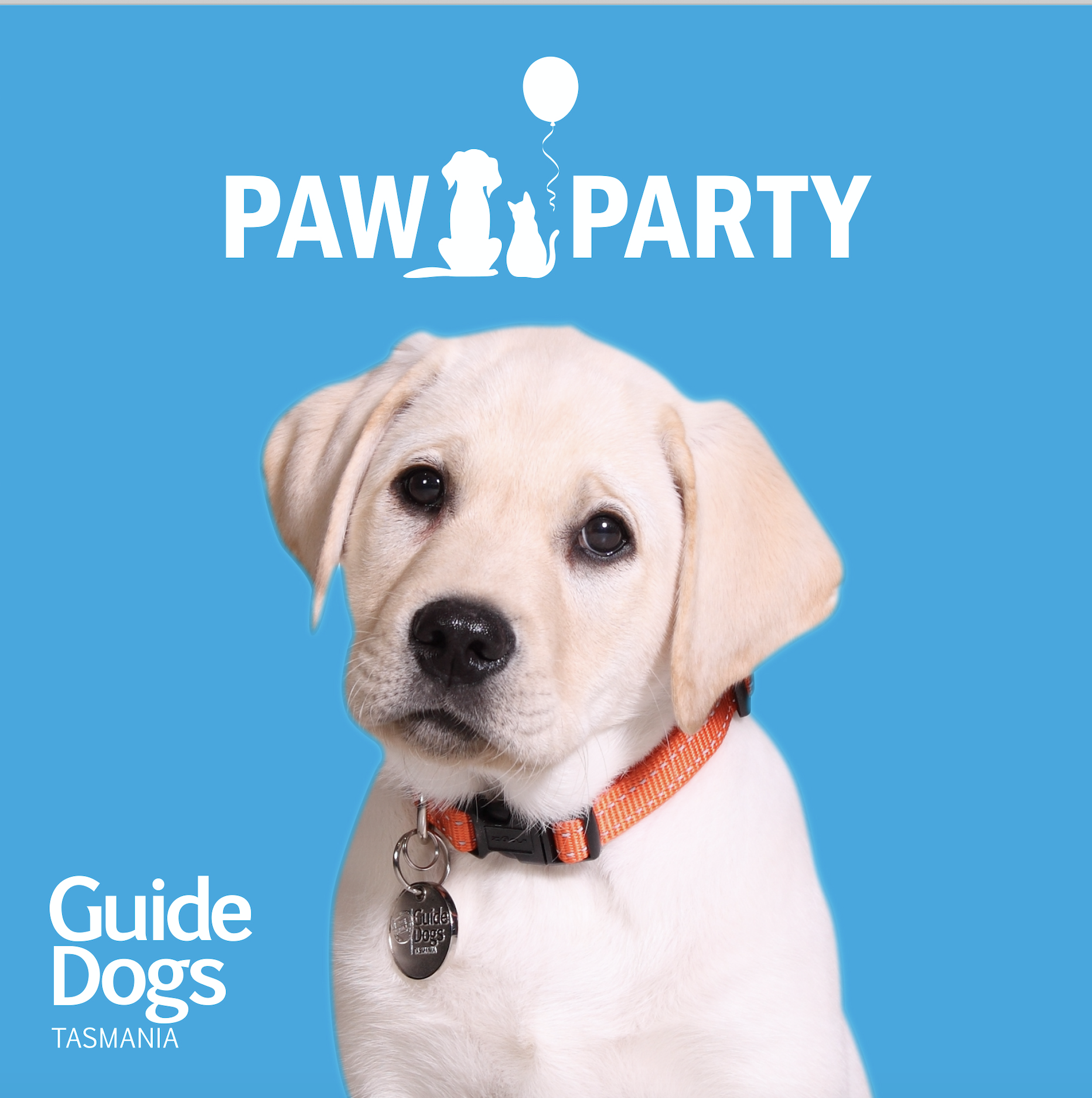 Party Pup Gold Lab