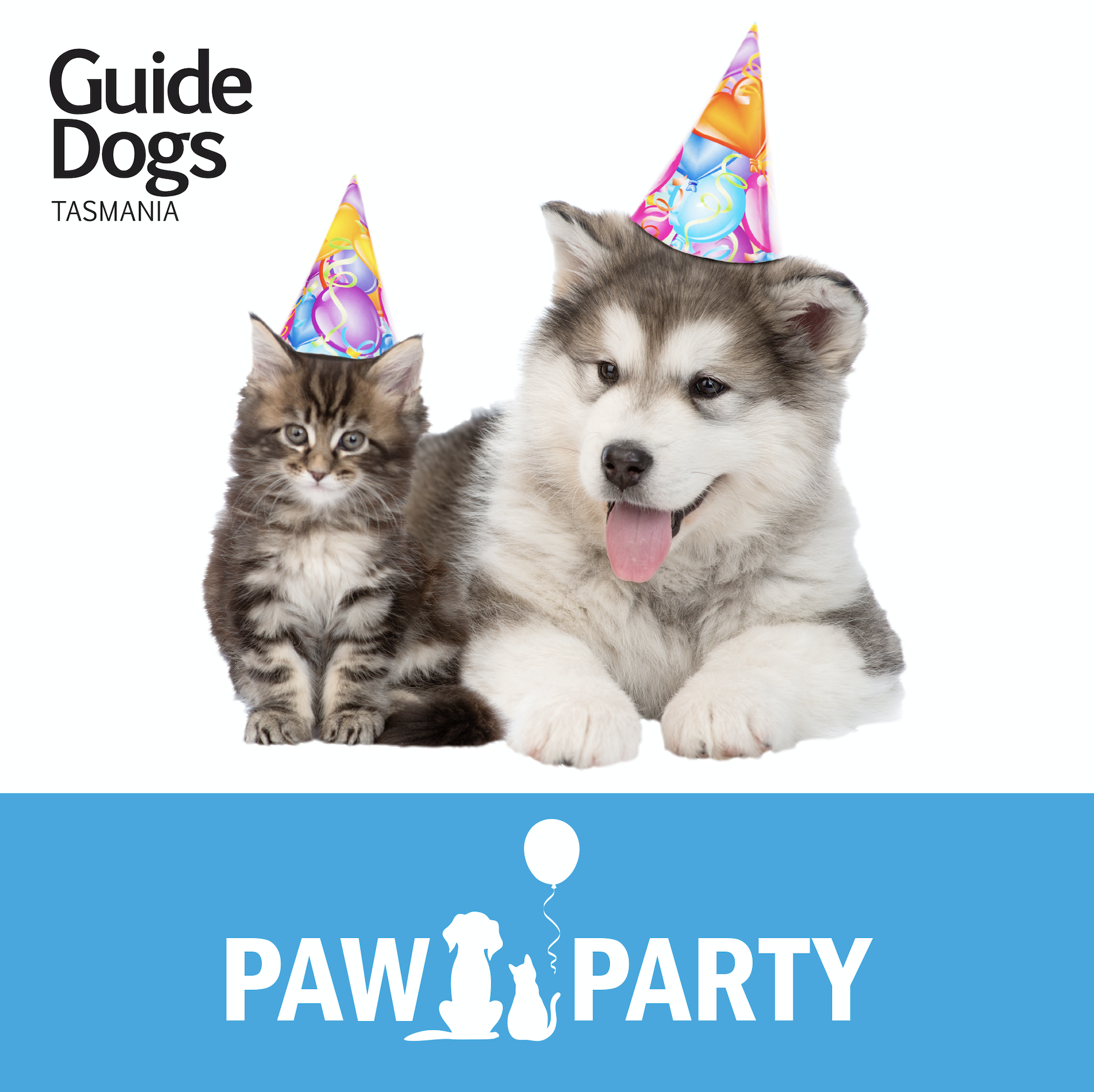 Party Pup and Kitten