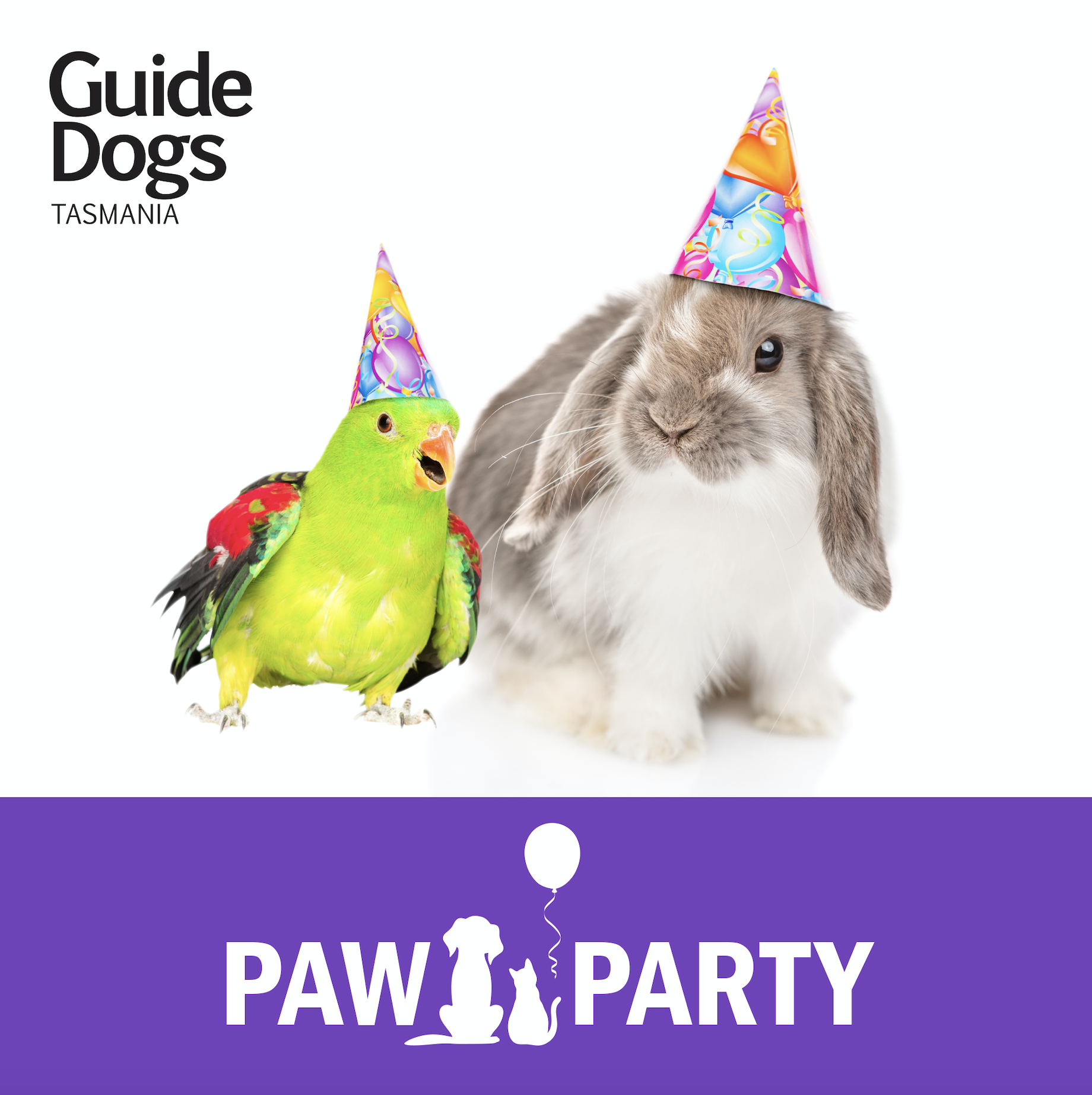 Party Parrot and Bunny